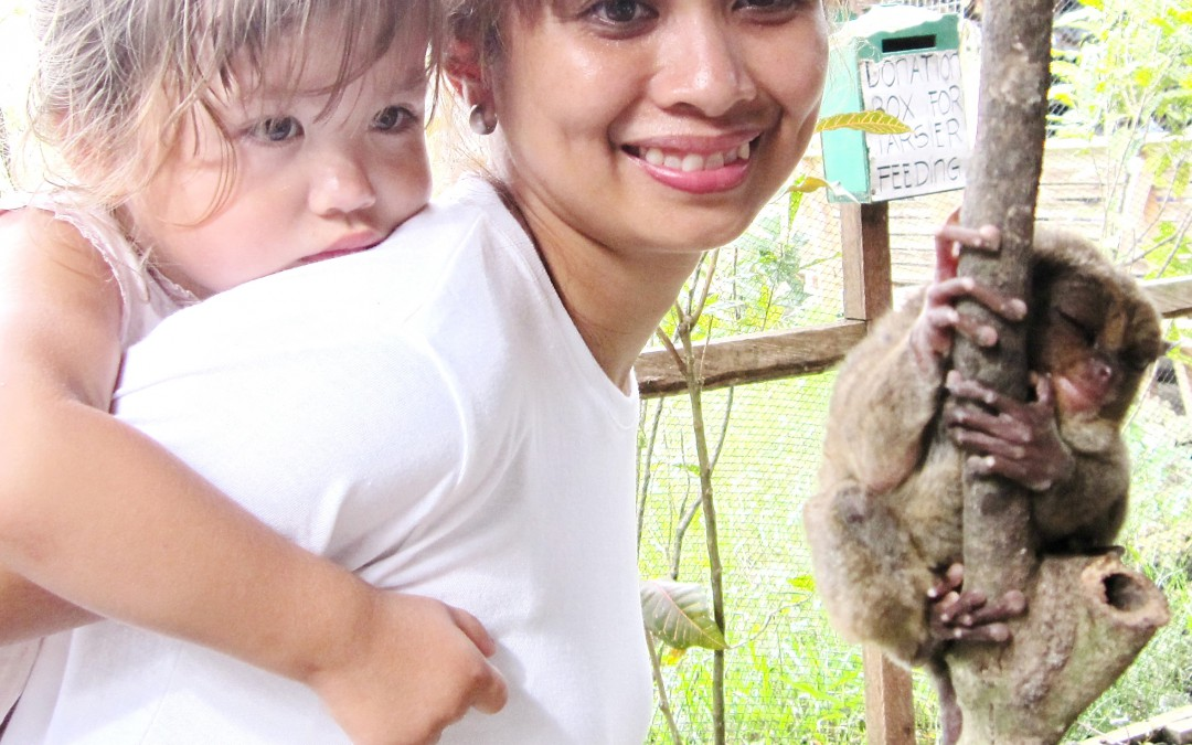 Tarsiers up close